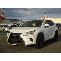 LEXUS NX300 2018 VERSION L